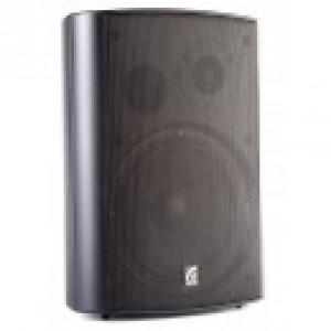 MS-20TB ROXTON Звуковая настенная колонка