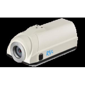 RVi-IPC22 IP-камера в стандартном исполнении